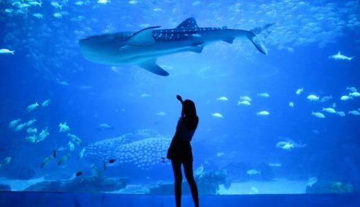 沖縄かりゆし水族館オープン!気になる混雑状況,口コミ,予防対策は?