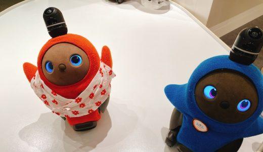 LAVOT(ラボット)はどこで買える?販売店・通販の買い方、中古も解説